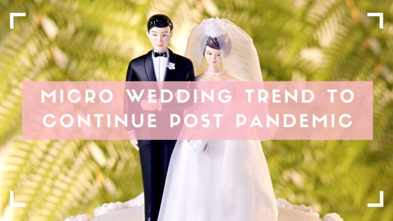 micro wedding explainer blog header