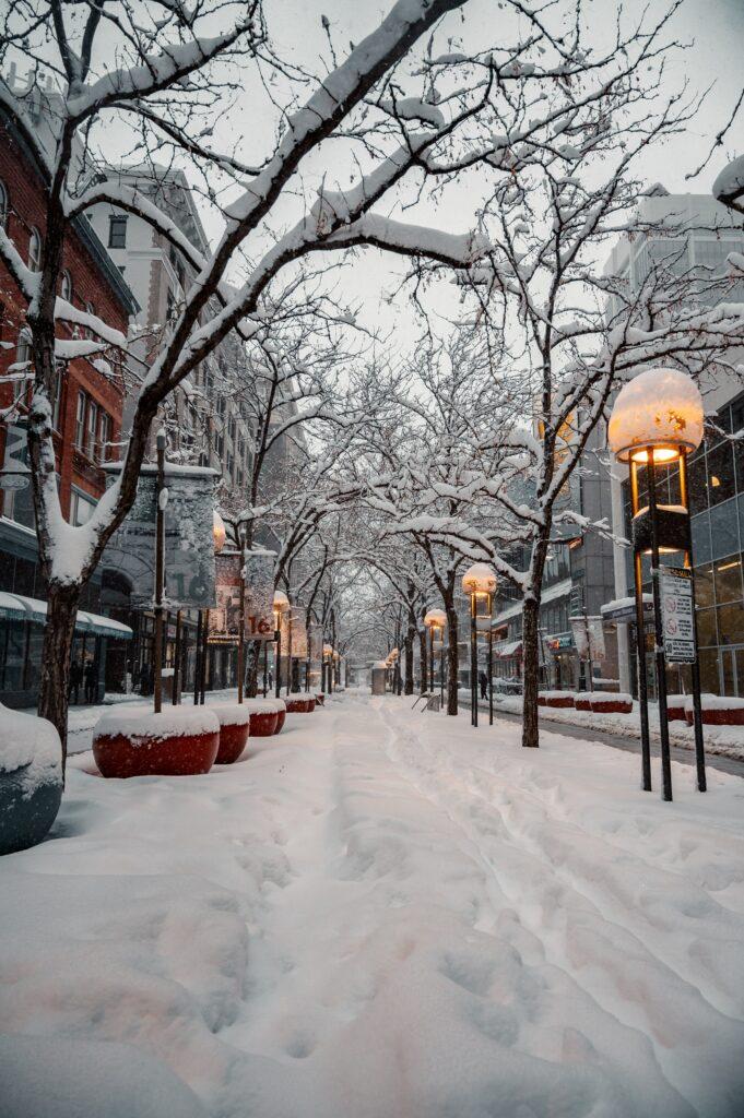 winter snow storm in city